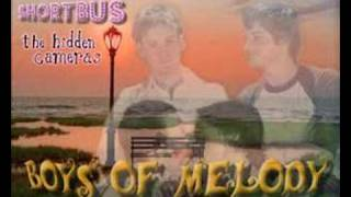 The hidden cameras - Boys of melody