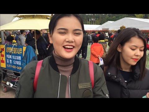 KOREA VLOG #17: IKSAN & BUAN! Фестиваль хризантем и Буддийский храм!