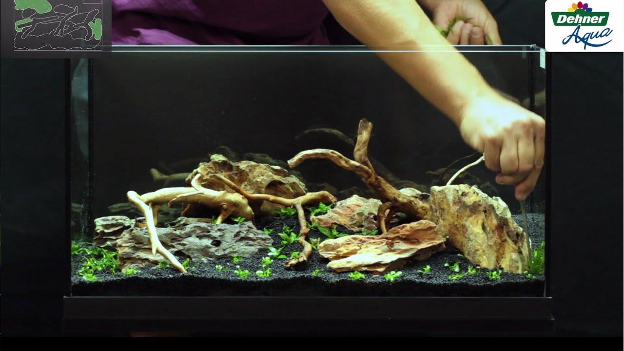 das erste aquarium dehner aqua start 60 youtube. Black Bedroom Furniture Sets. Home Design Ideas