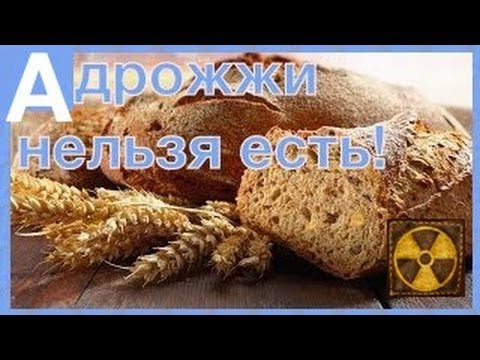 Картинки по запросу Дрожжи и дрожжевой хлеб - яд приводящий к болезням