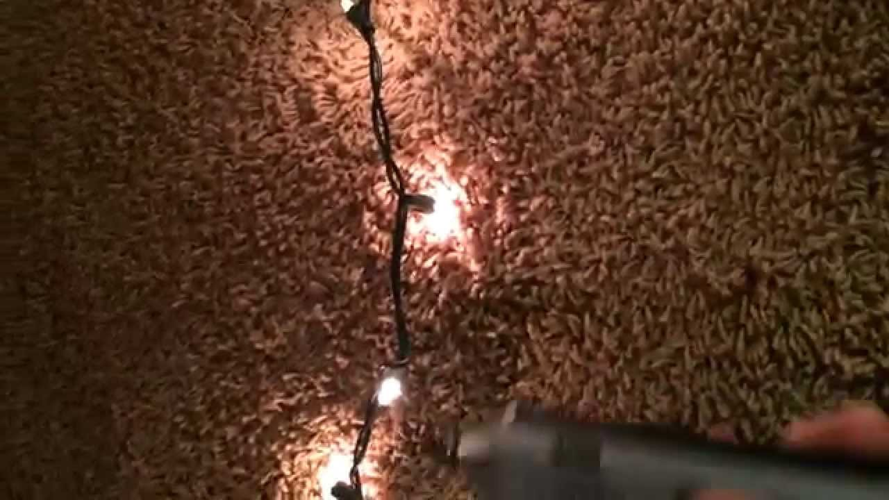 How To Find Bad Bulb In Christmas Lights.Finding Bad Christmas Light Bulbs Easily Diagnose And Fix Using An Inductive Toner Amp Wand