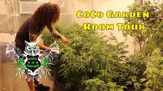 CoCo Mix Indoor Weed Garden Tour | Learn How to Grow Marijuana | Cannabis Room Tour