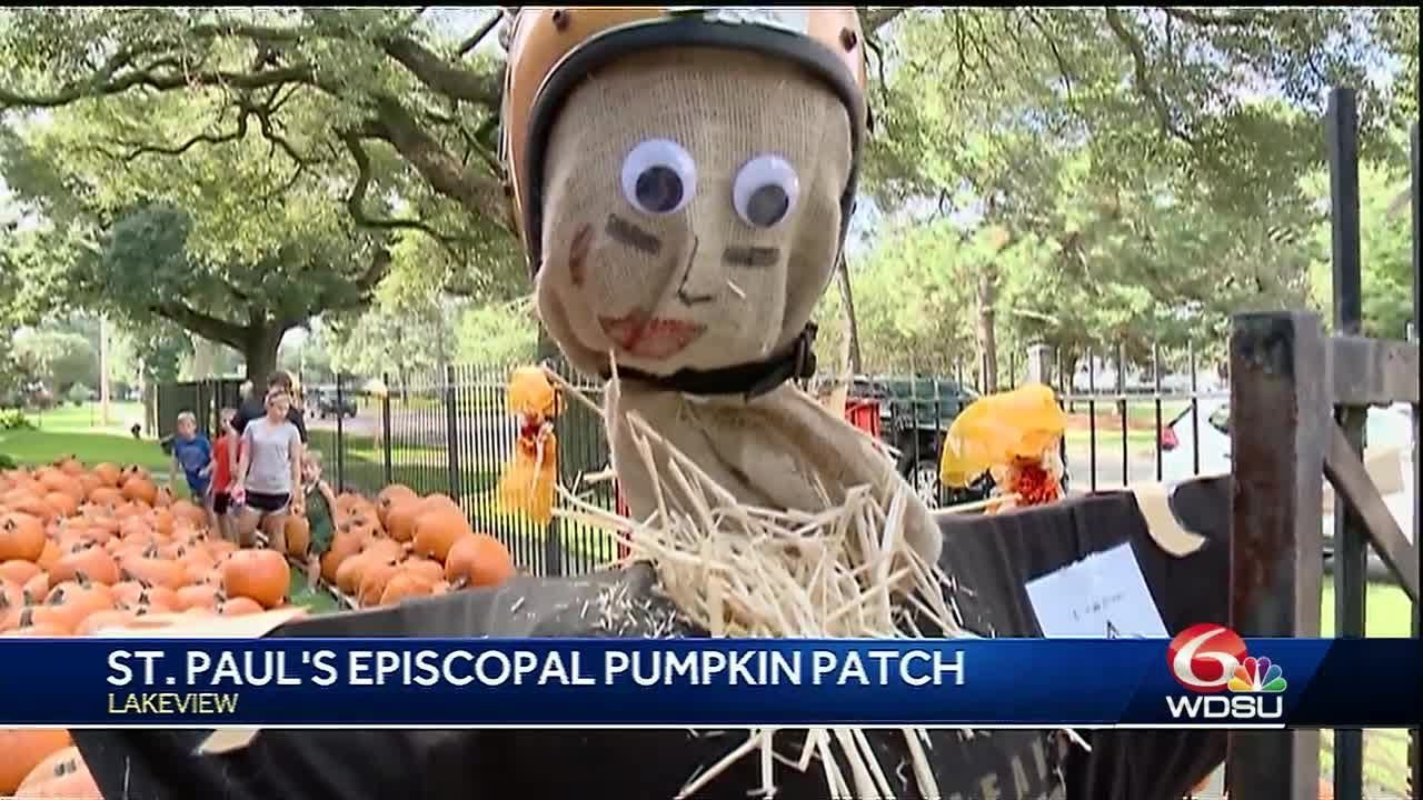 don-t-forget-to-pick-up-a-pumpkin-at-this-nola-spot