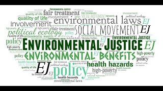 June 2020 Virtual Real Talk: Environmental Justice