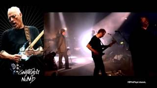 Pink Floyd - Comfortably Numb's