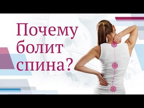 Симптомы болит спина