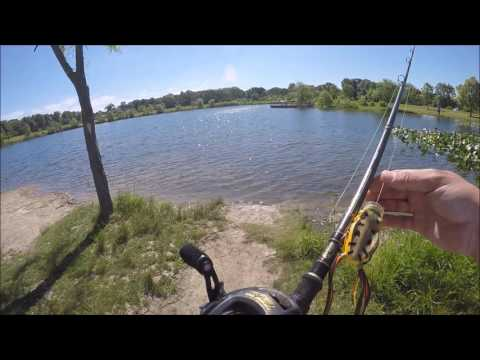Topwater fishing around Dupage county