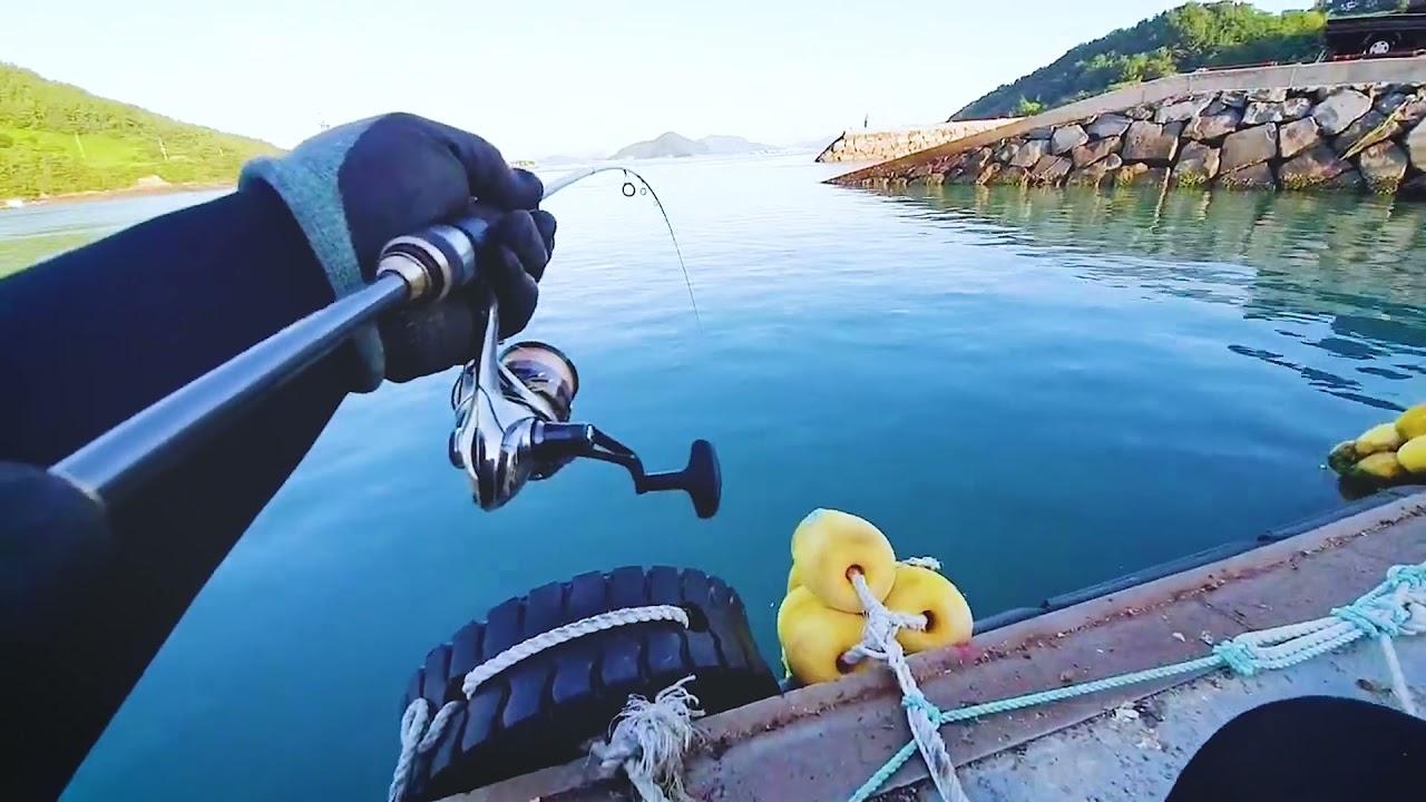 고등어 낚시 1타 3피  (three fish with one bait) funny fishing!/바다낚시, 원투낚시
