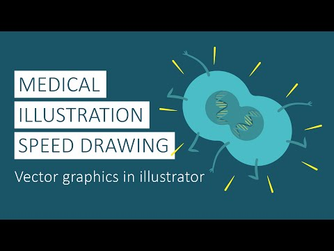Medical Illustration Speed Drawing - Vector Graphics in Illustrator by Annie Campbell
