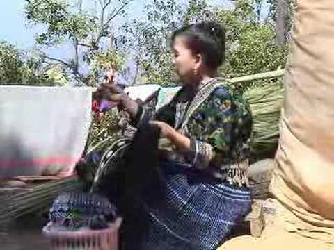 Moob Lub Neej (Hmong