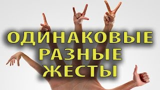 Язык жестов в разных странах # FunGimal(Язык жестов в разных странах Жесты в разных странах мира несут совершенно разную смысловую нагрузку и..., 2016-02-06T12:30:01.000Z)