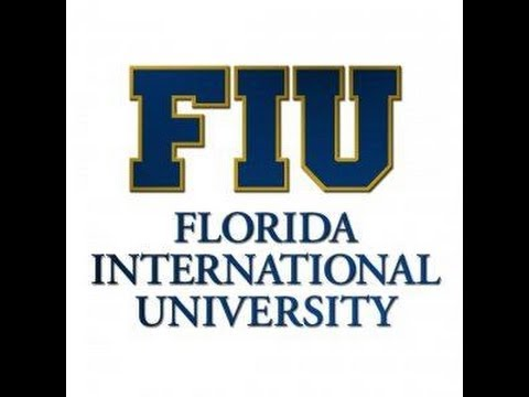 FIU Faculty Mentor Program Preparing for the 3rd Year Review