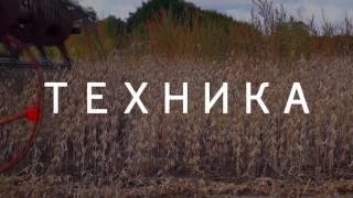 Купить готовый бизнес! Фермерское хозяйство на Черноземье. 680 га. Готовый бизнес ферма(, 2016-10-19T11:40:45.000Z)