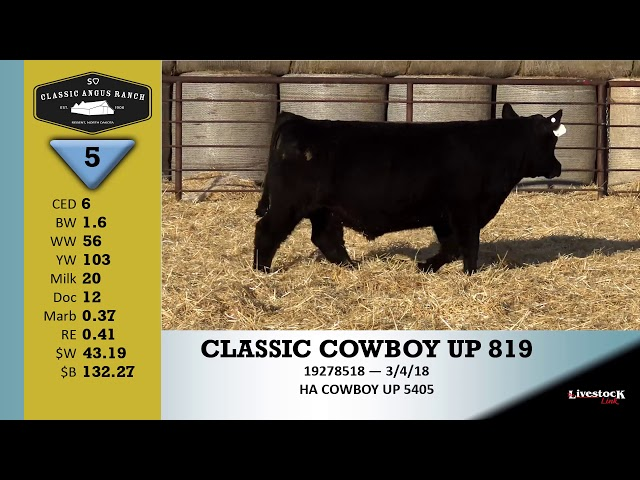 Classic Angus Ranch Lot 5