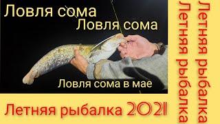 Летняя рыбалка 2021 ловля сома летняя рыбалка ловля сома в мае