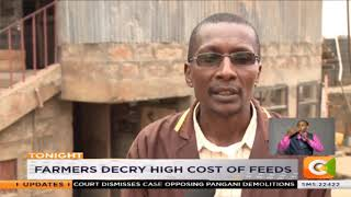 Poultry farmers hit by high cost of feed, imports