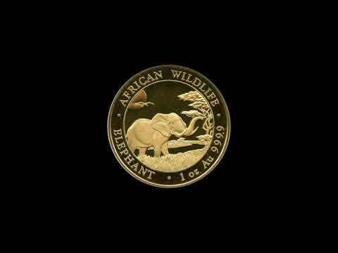 1 oz Somalia Elefant Gold - 2019