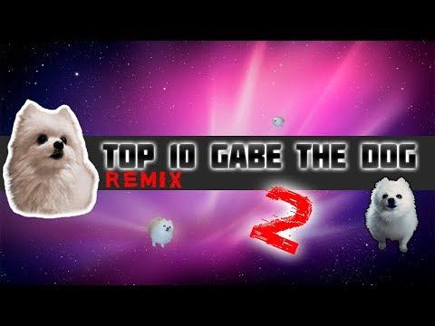 TOP 10 GABE THE DOG REMIX 2! Топ 10 Гейб собак Ремикс 2!  #Ripgabe