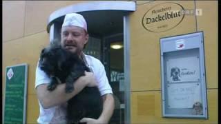Stermann & Grissemann Dackelblut- Dorfers Donnerstalk
