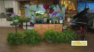 Gardening Gifts For Mom!