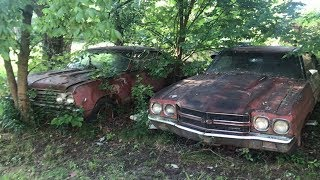A PAIR OF TRUE SS396 CHEVELLES FOUND HIDDEN FOR DECADES IN THE WEEDS!!!