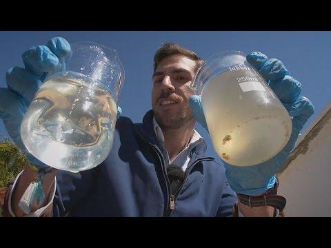 Bakteriler Su Aritma Sistemlerinin Hizmetinde