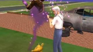 The Genie - The Sims 2 Free Time