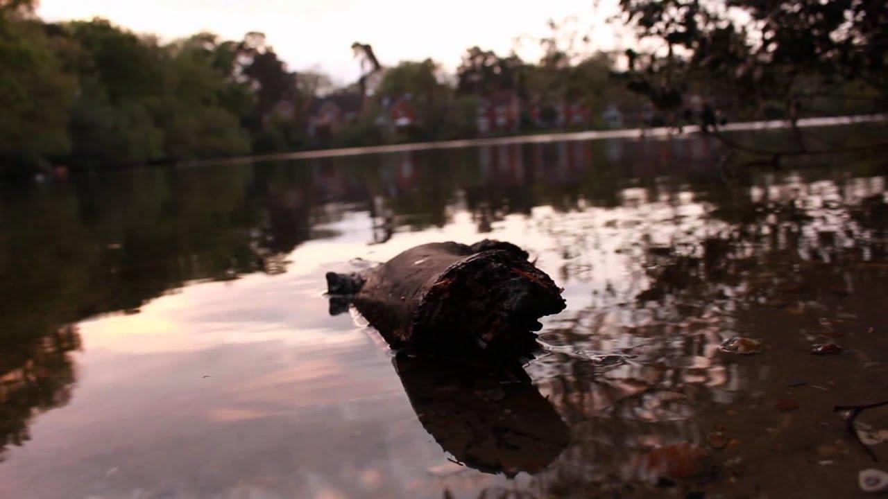 Canon 700D | Sample Film | Nature | 1080p HD - YouTube