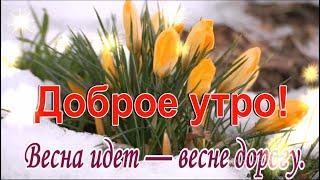 С утром добрым светлым ясным Днем чудесным и прекрасным  Весна идет — весне дорогу.
