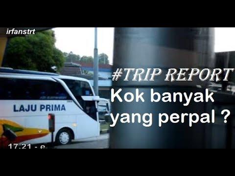 PERPAL? Sensasi Pertengahan Ramadhan |  Trip Report Naik Laju Prima - SHD LP190