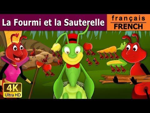 La Fourmi et la Sauterelle | Histoire Pour S'endormir | Contes De Fées Français