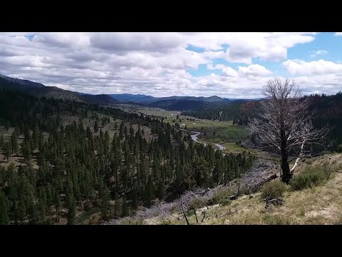Enjoying A Lovely View Above The Chewaucan River, Oregon - Always Ants