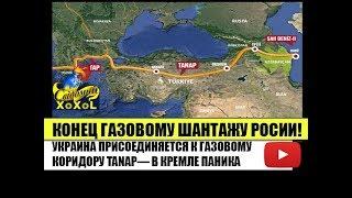 Конец газовому шантажу России!  Украина присоединяется к газовому коридору Танап