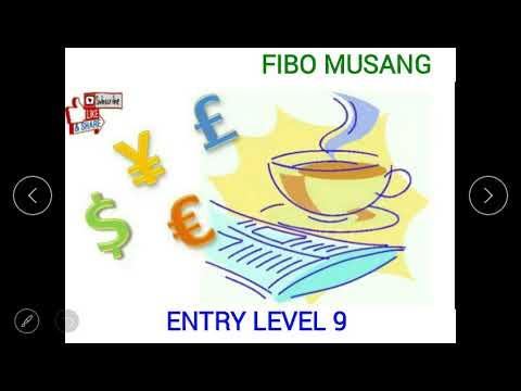 fibo-musang-:-level-entry-9