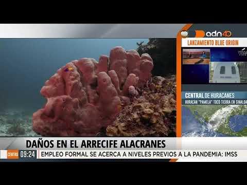 Arrecife coralino en