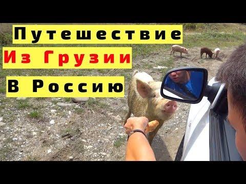 Из Грузии в Россию на Машине с Детьми. Из Кахетии (Бушети) в Осетию (Владикавказ)