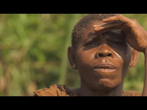 As Cameroon's jungle shrinks, pygmies' lifestyle is under threat