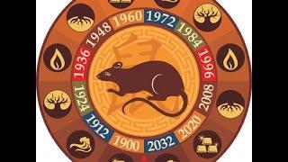 Крыса. Таро прогноз на год Петуха 2017 для рожденных в год Крысы.