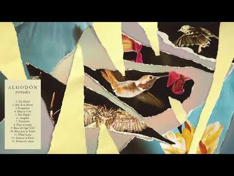 Algodón - Virtudes  (Disco Completo)