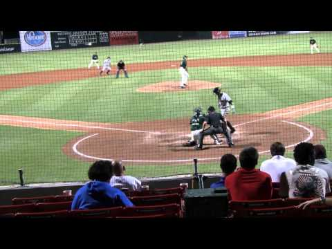 Savannah Sand Gnats vs. Charleston River Dogs