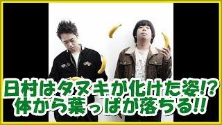 バナナマンの面白フリートーク【日村はタヌキが化けた姿!? 体から葉っぱが落ちる!!】