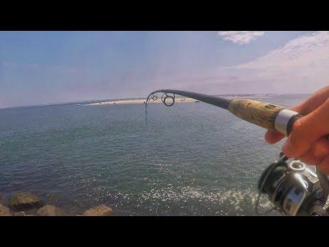 Wildwood SEAWALL JETTY TOG Fishing! [New Species]