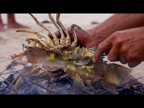 Ep.8 Fishing Remote Australian Islands & Diving For Robbie's Crayfish Risotto - FISHING THE WILD NT
