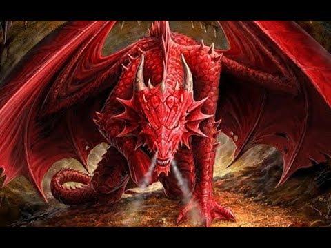 Год дракона характеристика. Гороскоп год.