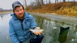 Щука на ЖЕРЛИЦЫ Прозрачный лёд КРУПНАЯ плотва на безмотылку Рыбалка на реке