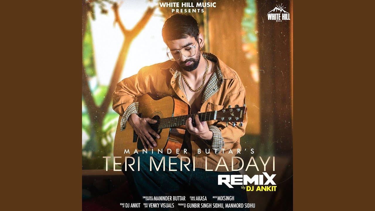 Teri Meri Ladayi (Remix Version)