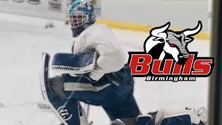 Pro Hockey Tryout to Alabama | SPHL Birmingham Bulls