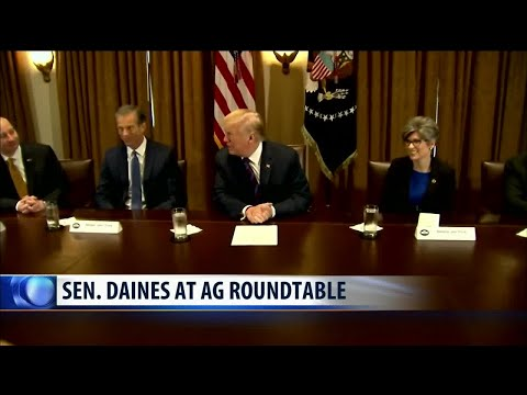 Daines highlights Montana ag during forum with President Trump