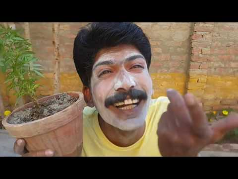 Asghar Khoso Valentine day  Funny Clip