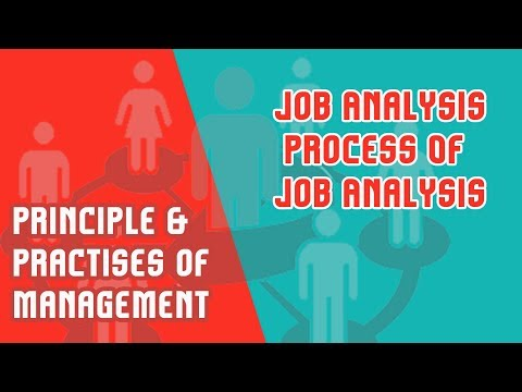 Module 5 Part 3 | Job Analysis